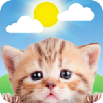 Weather Kitty 5.3.6 MOD (Meow Prime Monthly)