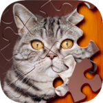 Jigsaw Puzzle 1.1.4 MOD (Unlimited Purchase)