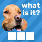 Zoom Quiz: Close Up Pics Game, Guess the Word 3.5.2 MOD (Skip a Level)