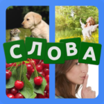 4 картинки 2.210706-9 MOD (Unlimited Coins)