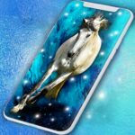 Horse Live Wallpaper 🐎 Majestic Animal Wallpapers 6.7.11  MOD (Remove Ads)