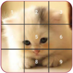 Cat puzzles Jigsaw , Slide ,2048 Puzzle Free Games  1.19.14 MOD