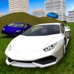 Multiplayer Driving Simulator 1.11 MOD (Unlimited credits)