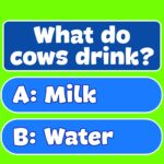 Trivia! Best family quiz & Offline games for free  2.5.0 MOD (Full recharge)