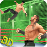 Tag Team Wrestling Superstars Fight: Hell In Cell  MOD (Unlimited Money)1.1.3