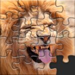 Puzzles for Adults no internet 1.4.8 MOD